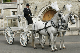 Horse drawn funeral cart